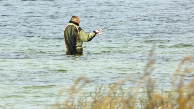 I den sidste weekend i marts kan man deltage i fiskekonkurrencen Isefjorden Havørred Open. Arkivfoto: Jesper von Staffeldt.